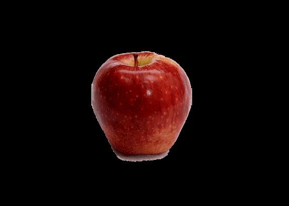 عکس سیب قرمز